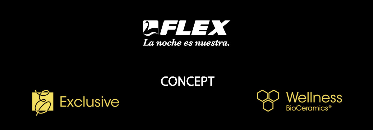 Flex comcept1