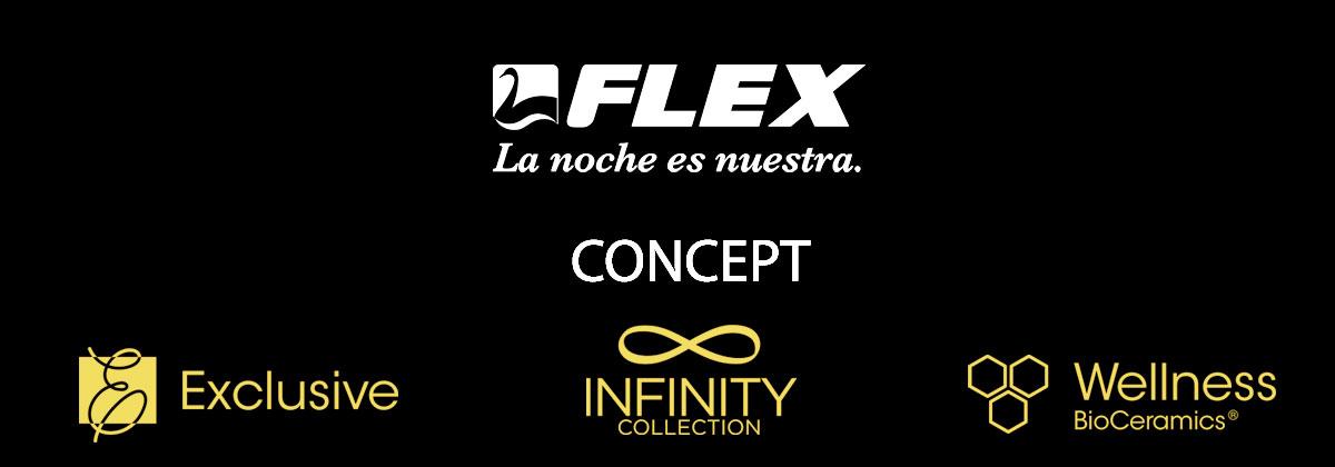 Flex concept1