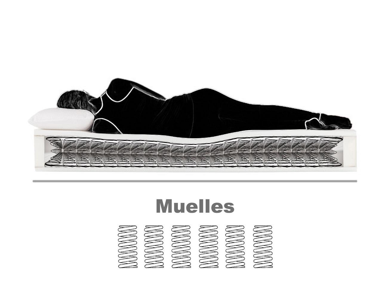 Muelles23