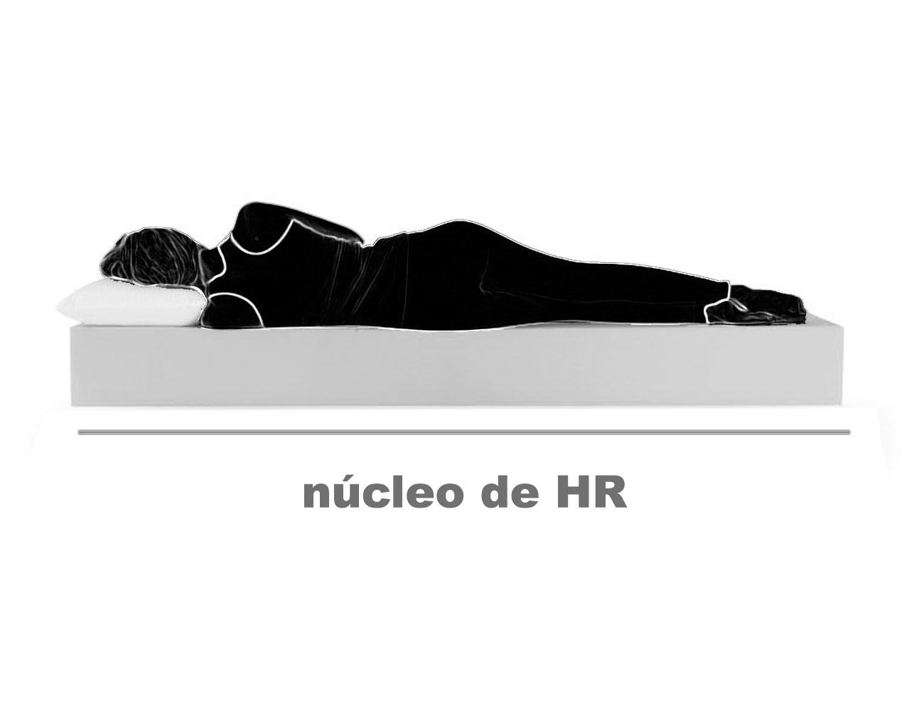 Nucleo hr 21
