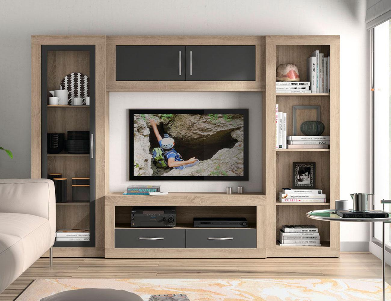 143 mueble salon comedor bajo vitrina tv modulo estantes estanteria cambrian grafito