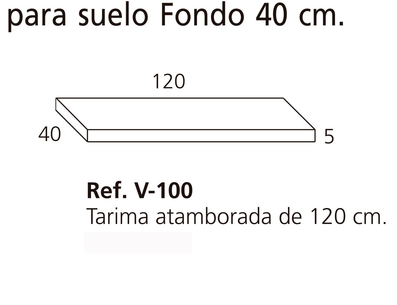 V 100