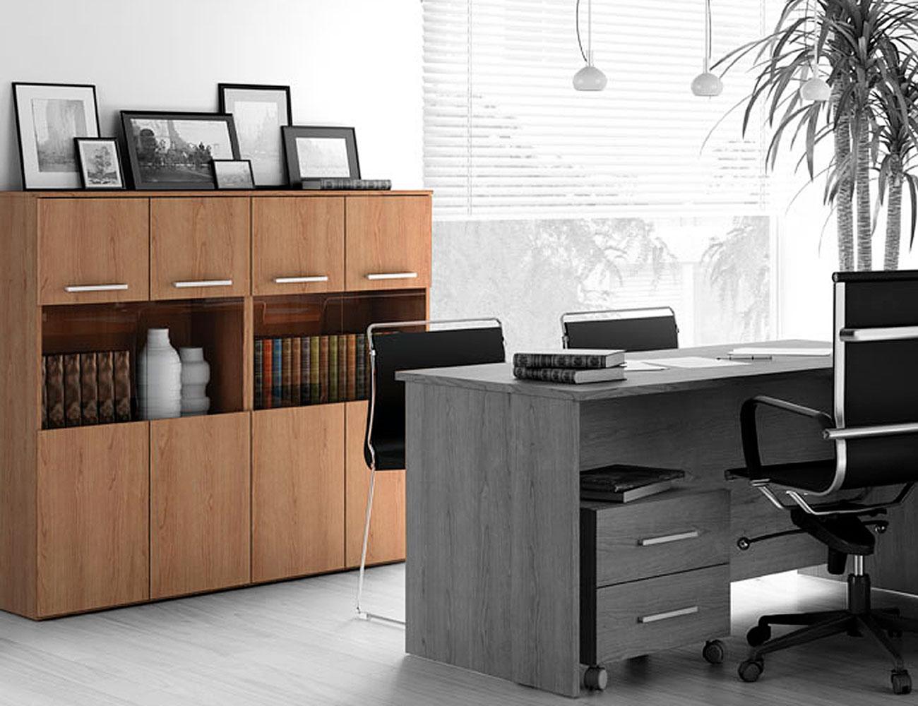 Aparador 2 puertas oficina despachos