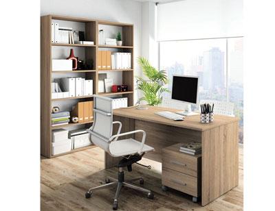 429 mueble despacho cambrian