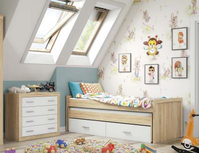 Dormitorio juvenil 65