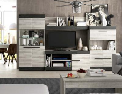 Mueble salon moderno 1
